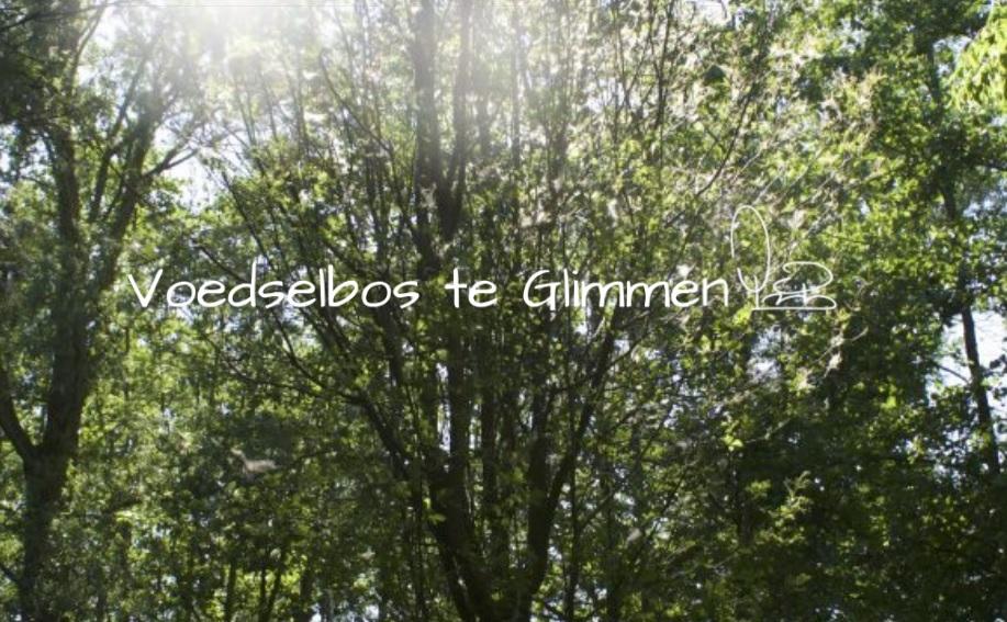 Grote Bomenactie voor Voedselbos Glimmen