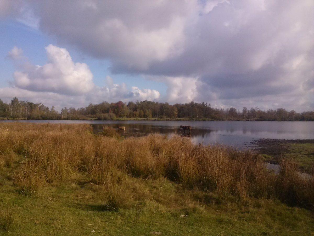 Overeenkomst over uitbreiding Kloosterveenénbehoud natuur Fochteloërveen