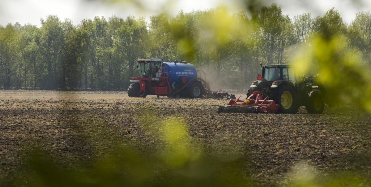Landbouwplan van minister Schouten kan sterker