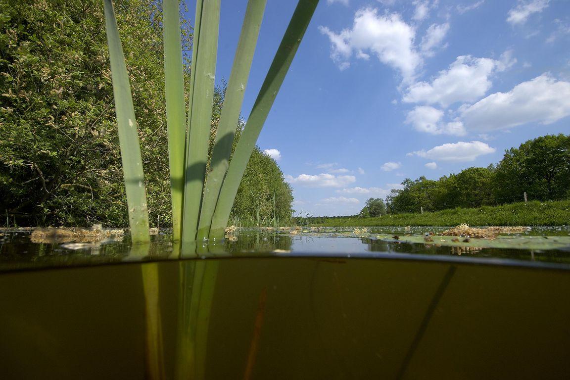 Drenthe is te droog: een oproep aan waterschappen