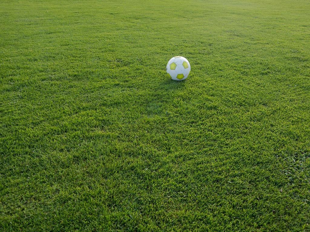 Beheer van sportvelden moet vanaf 2020 zonder bestrijdingsmiddelen