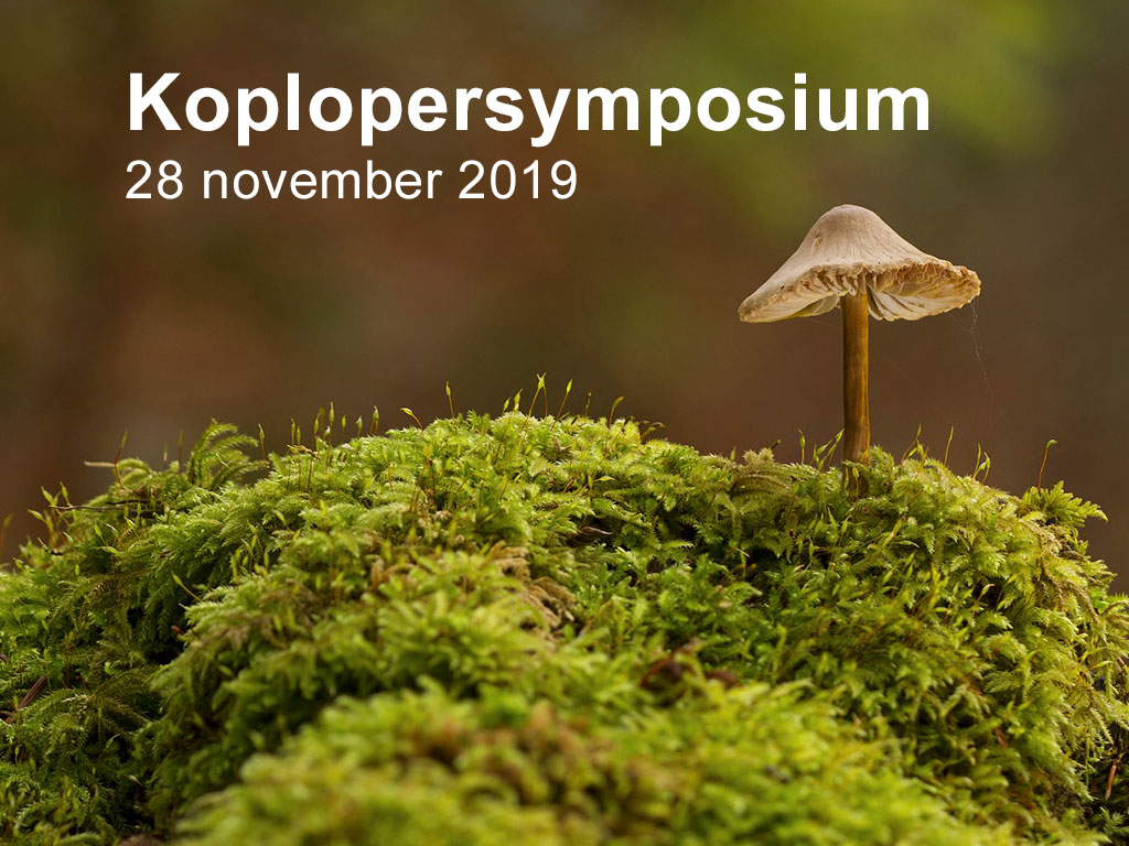 Koplopersymposium Circulaire Businessmodellen in Assen