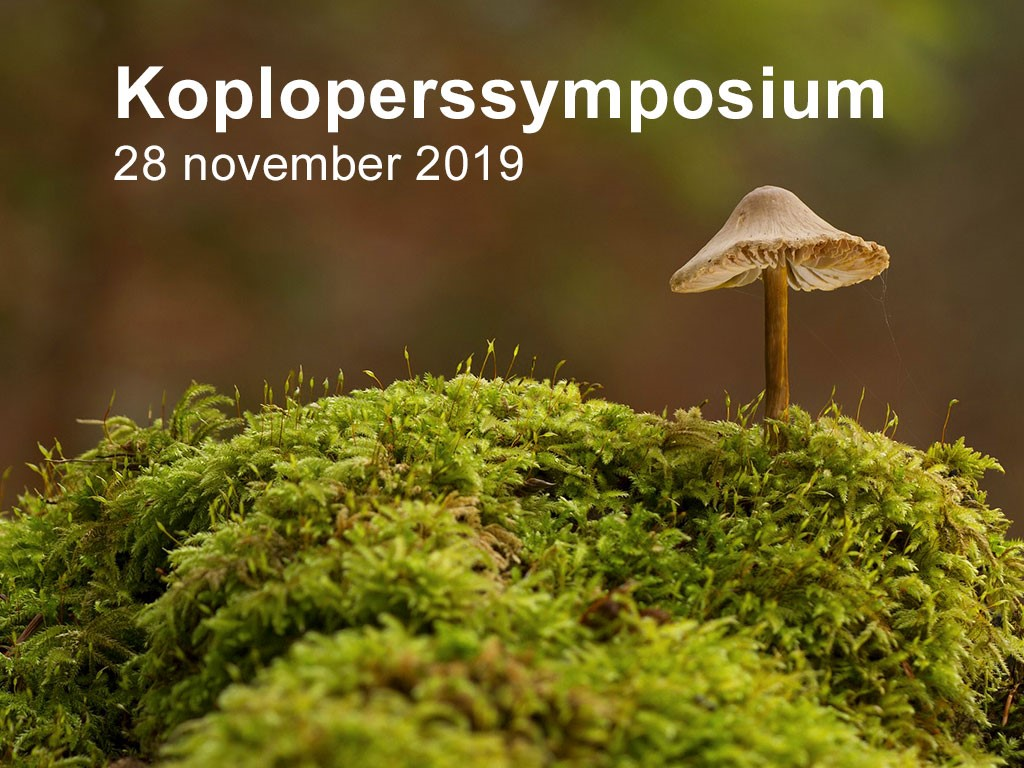 Koploperssymposium Circulaire Businessmodellen in Assen