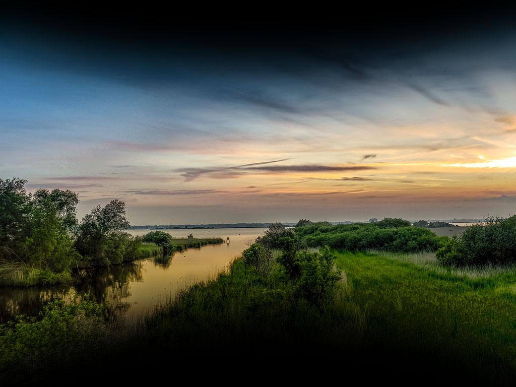 Panorama Drenthe: integrale oplossingen voor veenoxidatie