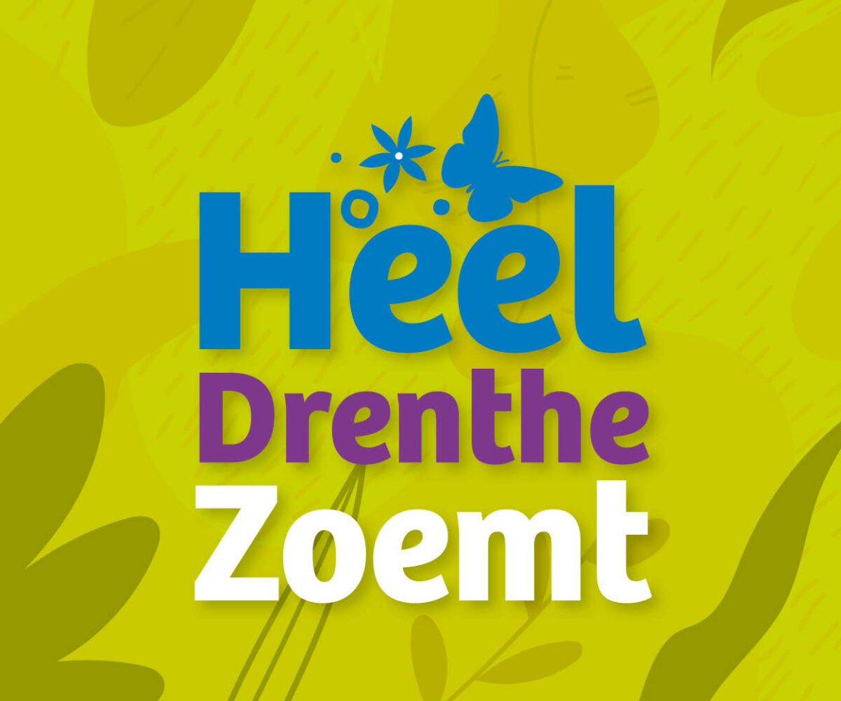 Heel Drenthe Zoemt slaat nieuwe weg in