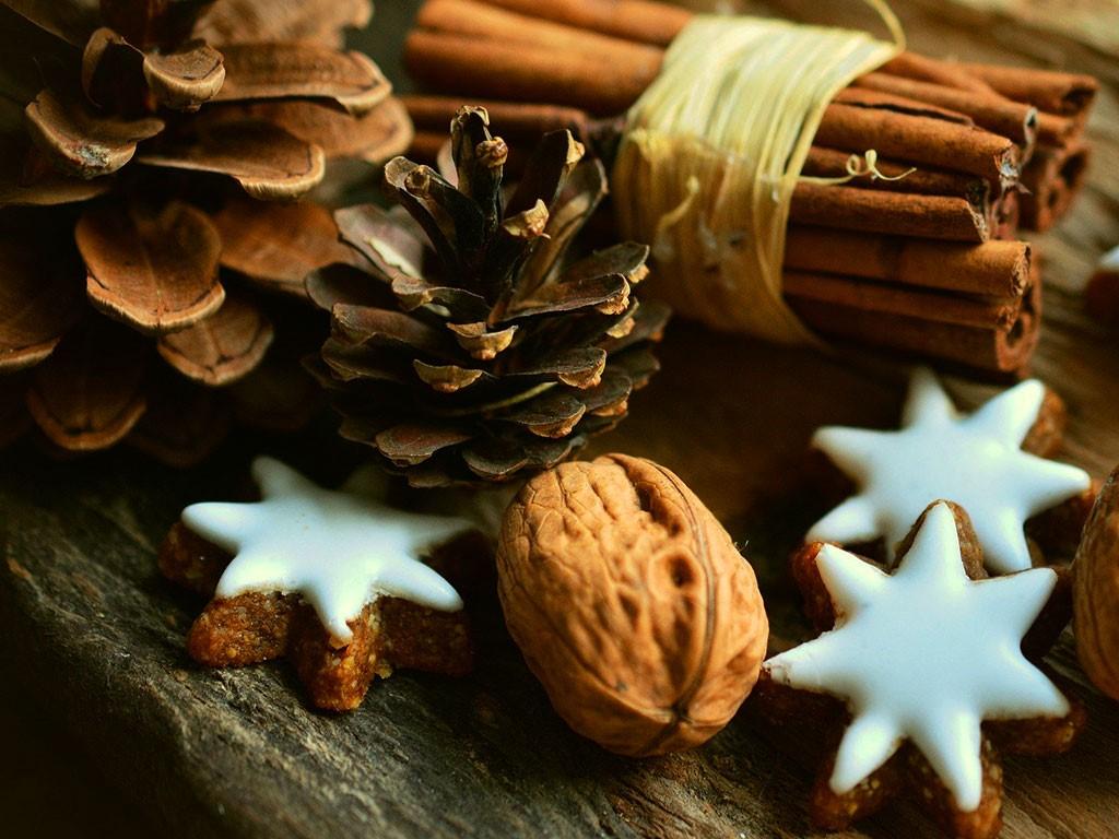 Tips voor een duurzame Drentse kerst van het NMF-team