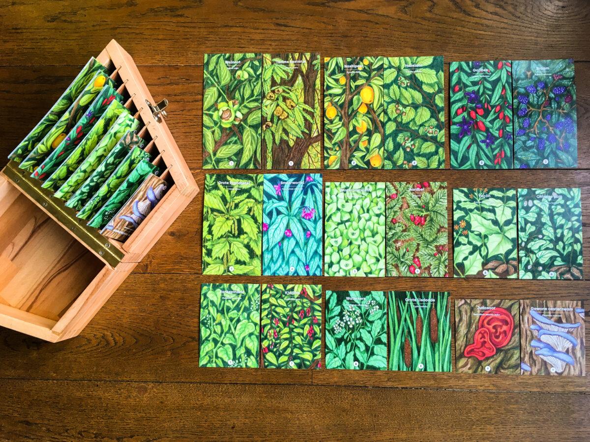 Plannen voor een voedselbos? Leen een toolkit!