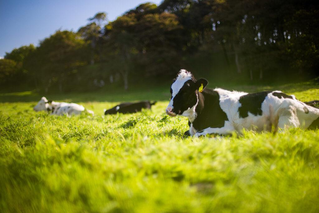 Eerste stap op weg naar meer duurzame landbouw