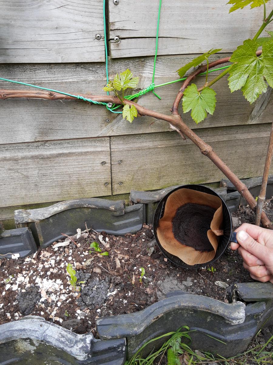 Drenthe loopt warm voor natuurlijk tuinieren