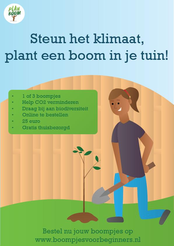 Plant een boom