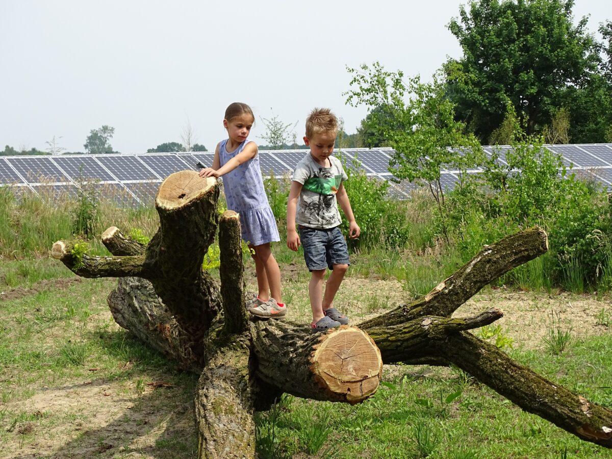 Nieuwsbrief Energietuinen- najaar 2020