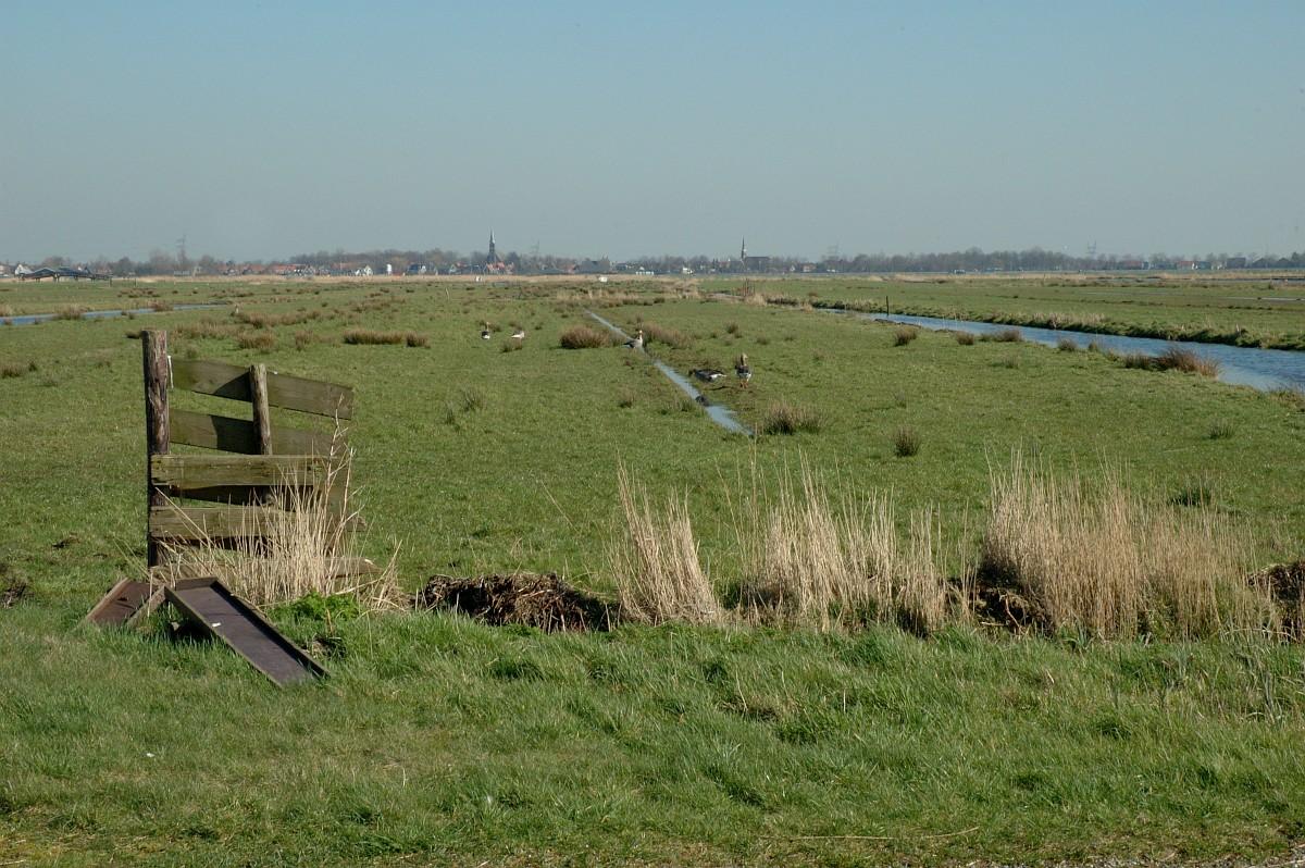 De Natuur en Milieufederatie Groningen zoekt per direct: Beleidsmedewerker Ruimtelijke Ordening en Klimaatadaptatie (30-38 uur p/w)