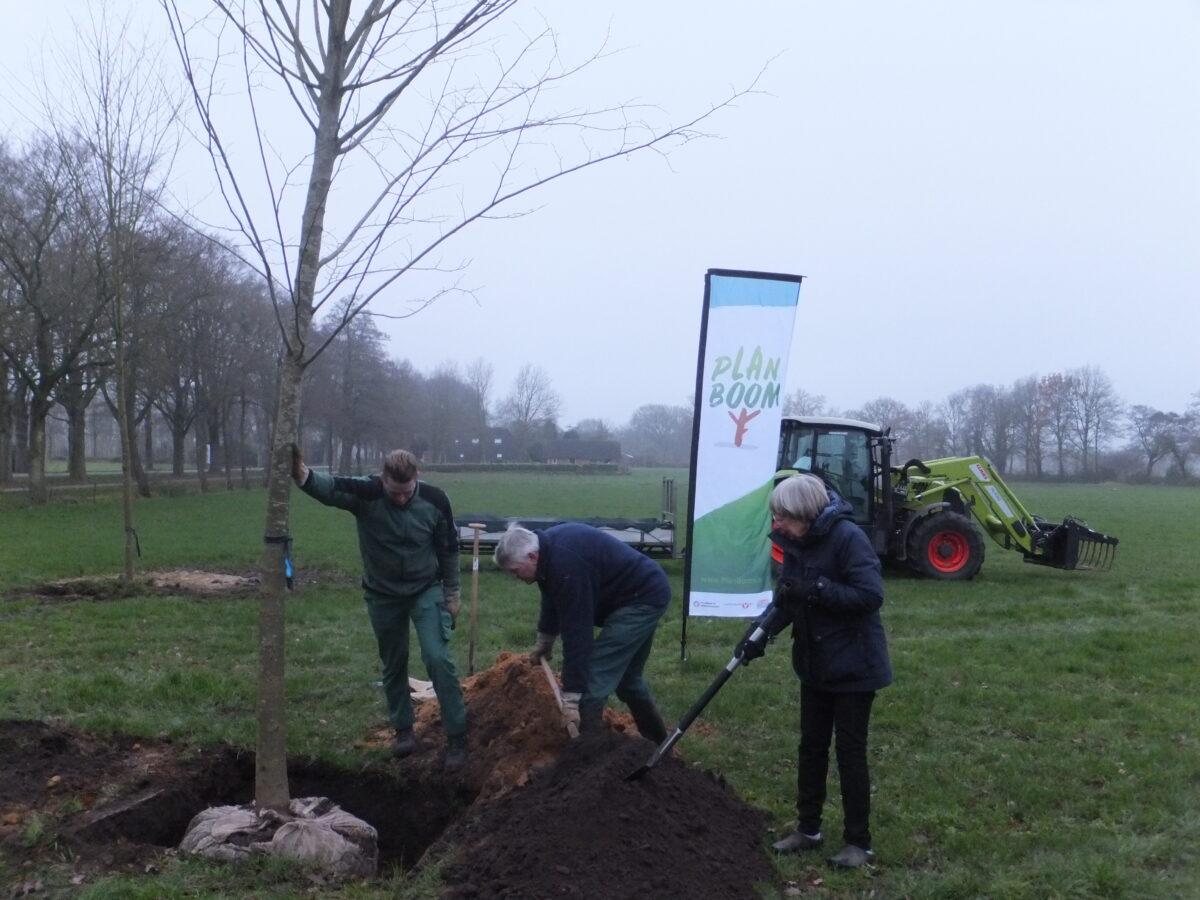 Eerste 20.000 bomen Plan Boom Drenthe geplant